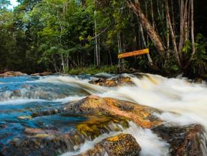 Cachoeira dos Passaros 06-10-13-49
