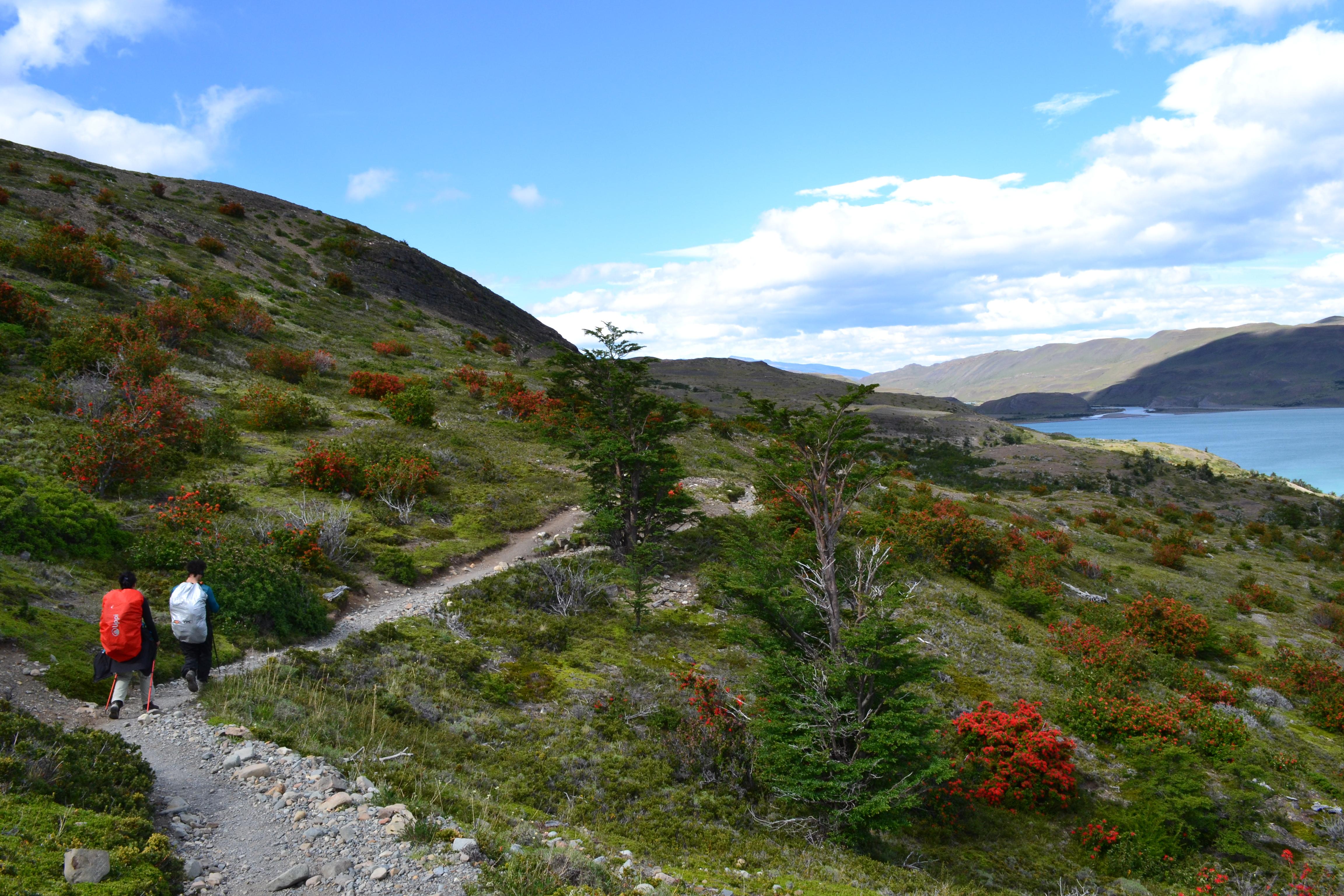 Circuito W : Uma experiência pessoal do circuito w na patagônia u ainda há